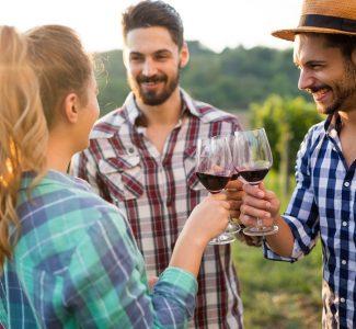 Foto Enoturismo, italiani sempre più turisti per vino