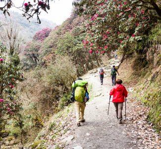Foto Turismo di prossimità e safety: idee e progetti per uscire dall'emergenza