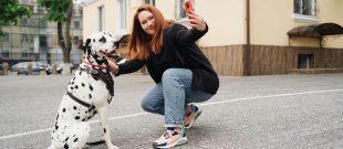Foto Pet Travelling Influencer