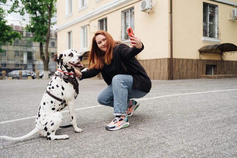 Pet Travelling Influencer