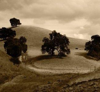 Foto Il turismo come occasione di rilancio per le aree rurali