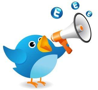 Foto Guida all'uso di Twitter per Hotel e operatori del turismo